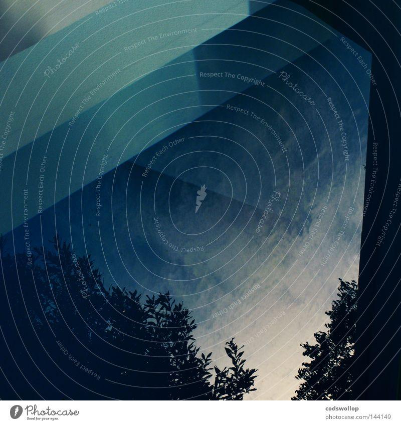bläuewidrig blau kobaltblau Licht Himmel Reflexion & Spiegelung Wolken Baum Schwimmbad Detailaufnahme Wasser cobalt preußischblau prussian bleu light clouds