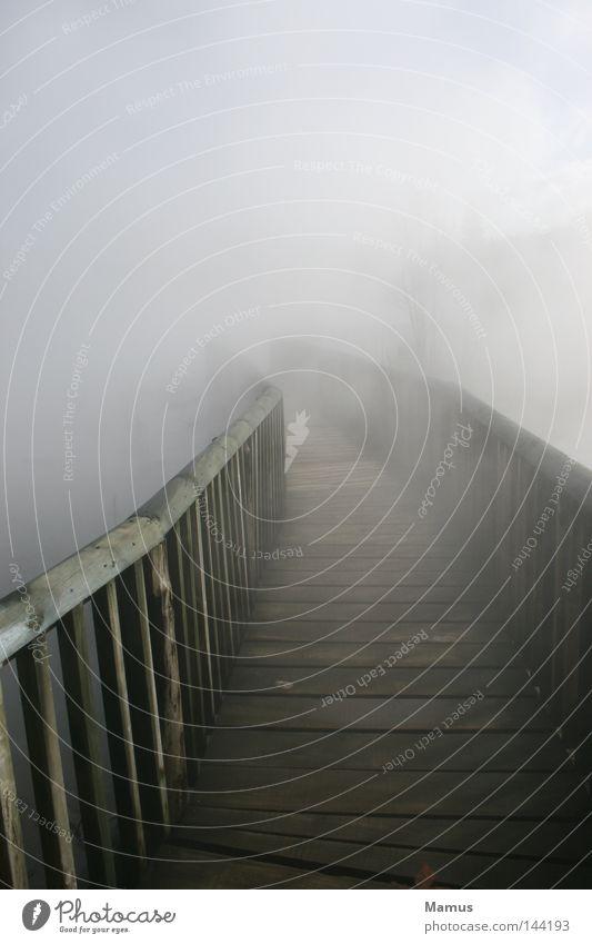 my way... Wasser Wolken Ferne dunkel Holz Wege & Pfade See Wärme Nebel nass Brücke Physik Rauch Steg verloren ungewiss