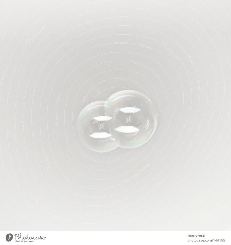 Siamese schön glänzend fliegen rund weich durchsichtig Schweben sanft Luftblase zerbrechlich Seife Flößen