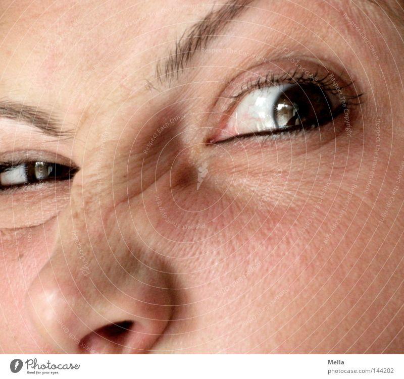 Shining oder ähnlich Frau Mensch Auge feminin Erwachsene Nase verrückt Hautfalten Wut Ärger Grimasse Augenbraue Gier Neid gereizt