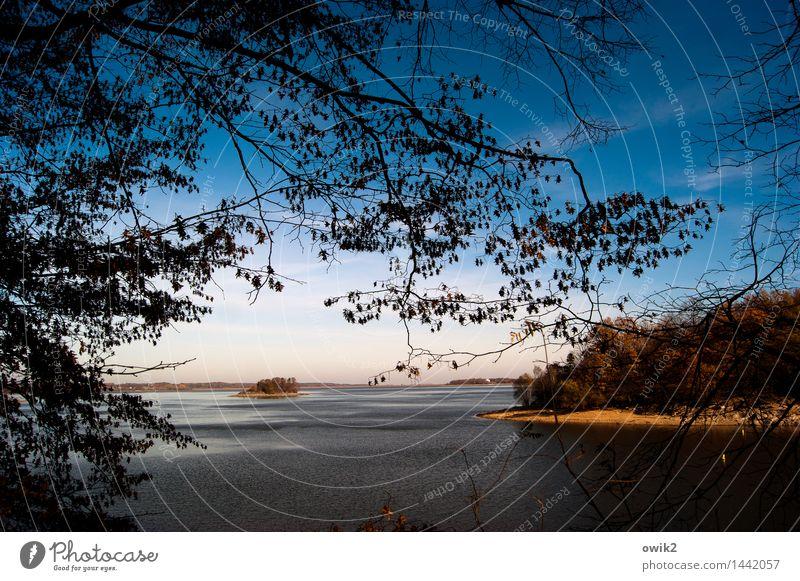 Durchblick Himmel Natur Pflanze Wasser Baum Landschaft Blatt ruhig Ferne Umwelt Herbst See Horizont Idylle Insel Klima
