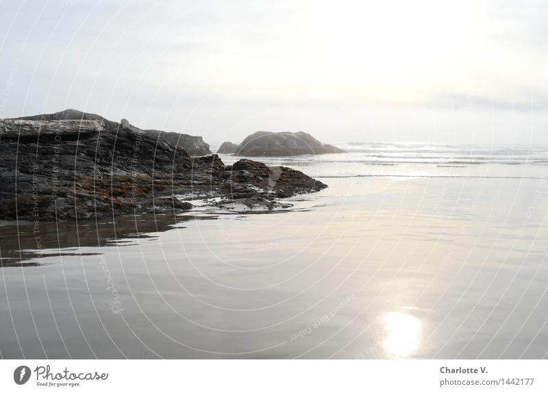 Ruhe Natur Wasser weiß Sonne Erholung Meer Einsamkeit Landschaft ruhig Herbst Küste grau Stein Felsen Horizont gold