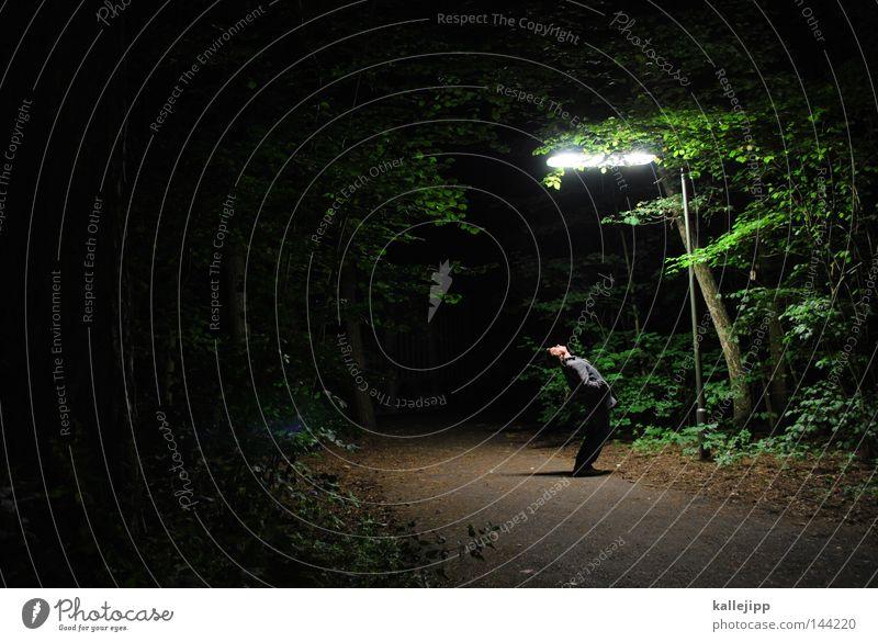 hi mado Laterne Lampe Straßenbeleuchtung Nacht Wald Fußweg Waldrand Fußgänger Mann Mensch verloren Wege & Pfade Opfer Kriminalität Tatort entdecken staunen