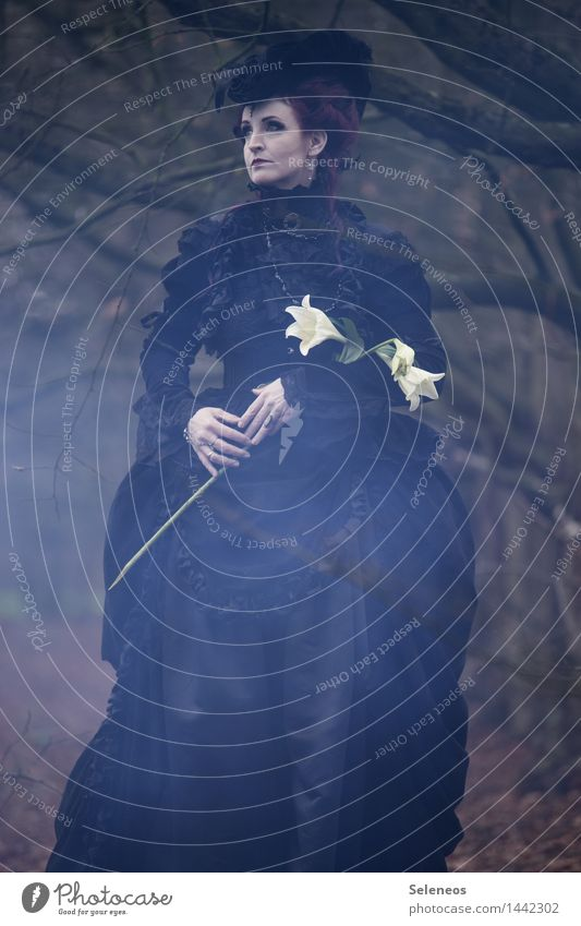 dark days schön Mensch feminin Frau Erwachsene 1 Subkultur Rockabilly Umwelt Natur Blume Blüte Wald Bekleidung Kleid Hut Traurigkeit Sorge Trauer Tod Schmerz