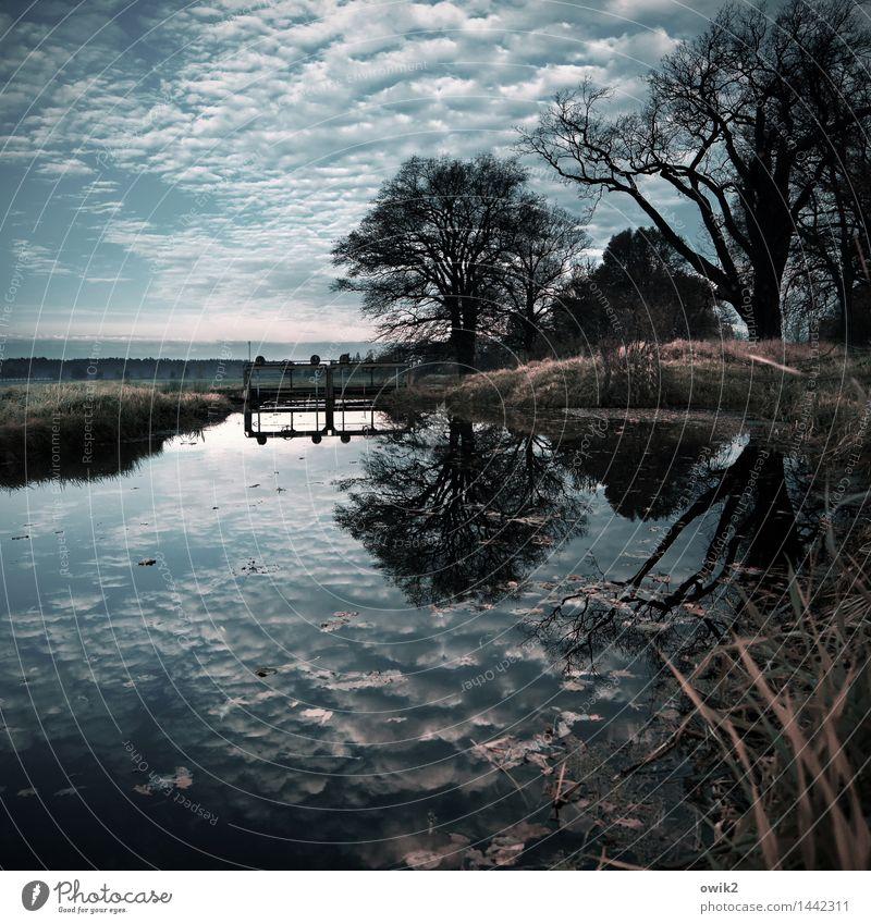 Staustufe Himmel Natur Pflanze Wasser Baum Landschaft Wolken Ferne Umwelt Horizont Wetter Luft leuchten Idylle Sträucher Zukunft