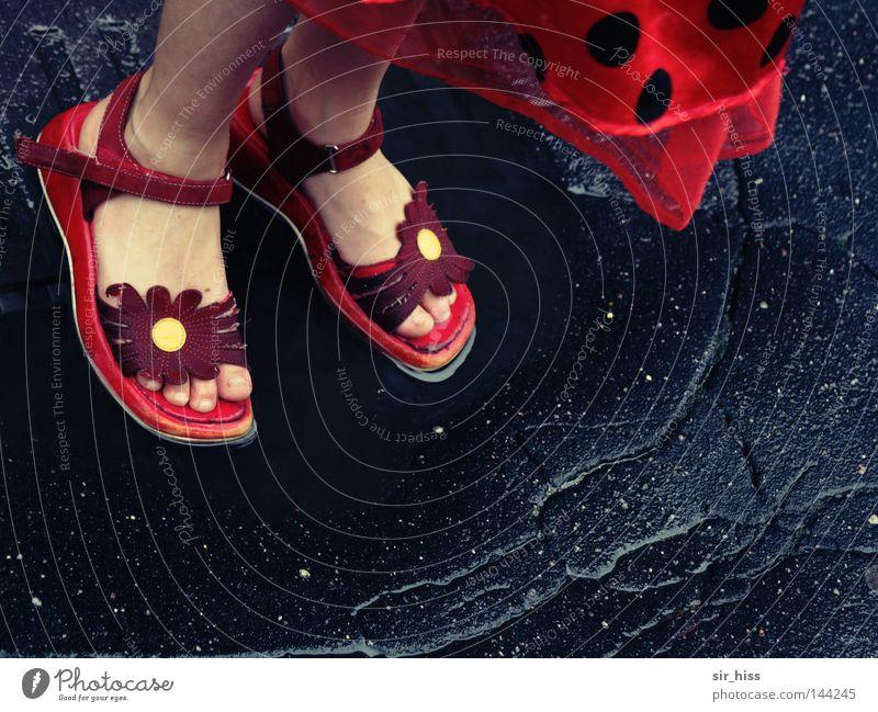ich steh im Regen... Blume Sommer Freude Straße Spielen träumen Fuß Schuhe Tanzen nass Zehen Pfütze Tagtraum