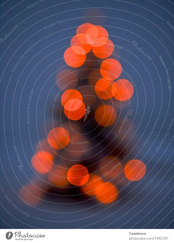 Christbaum Weihnachten & Advent Pflanze Nachthimmel Winter Schnee Baum Tanne Kerze Weihnachtsbaum Feste & Feiern leuchten Kitsch blau grau orange schwarz