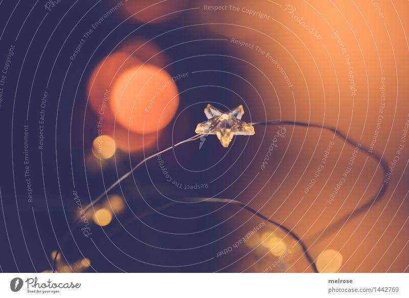 Advent III elegant Stil Design Weihnachten & Advent Lichterkette Lichtpunkt Unschärfe Stern (Symbol) Sternlichterkette Lichtschein Lichtblick glänzend genießen