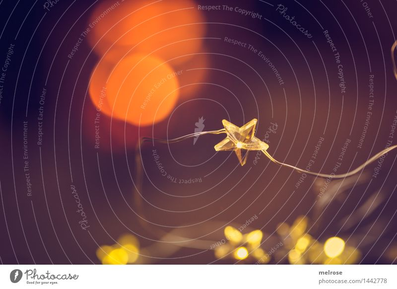 Advent I elegant Stil Design Weihnachten & Advent Bokeh Lichterkette Lichtpunkt Lichtschein Lichtblick Stern (Symbol) Sternlichterkette glänzend genießen