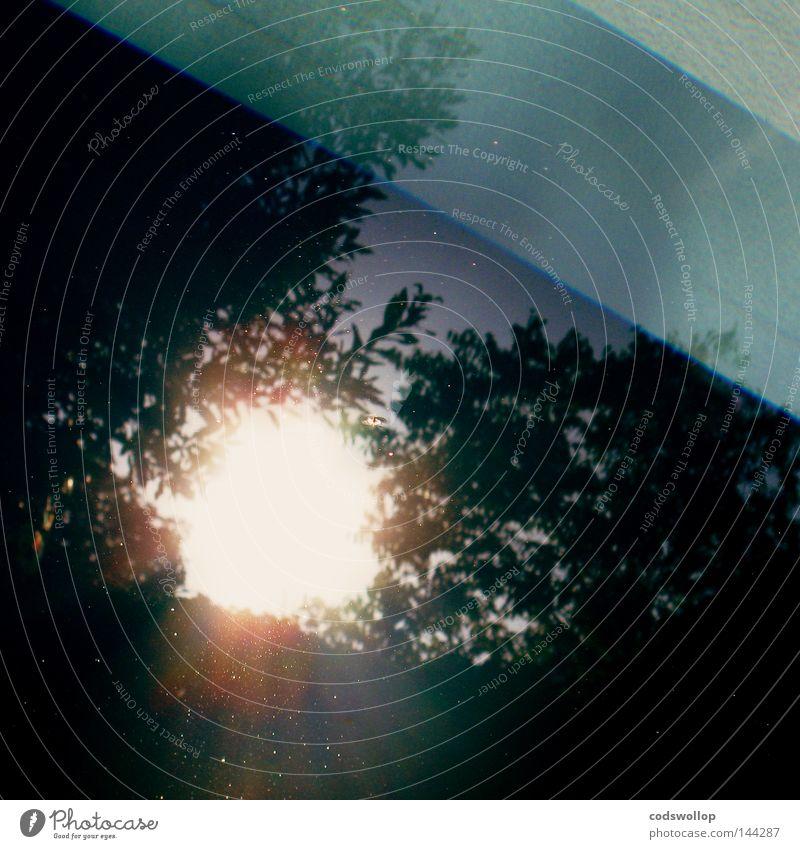blaubruch Licht Reflexion & Spiegelung Himmel Baum Schwimmbad Wasser Sonne Himmelskörper & Weltall Detailaufnahme light sky tree water blue sun