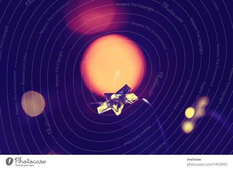 Advent II elegant Stil Design Weihnachten & Advent Stern (Symbol) Sternlein Lichterkette Boden Lichtpunkt Sternlichterkette Lichtschein Unschärfe Lichtblick
