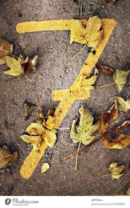 versiebtes | zifferblätter Herbst Herbstlaub Ziffern & Zahlen 7 braun gelb herbstlich Lebensalter Geburtstag Glückszahl Glücksspiel Termin & Datum Juli Jubiläum