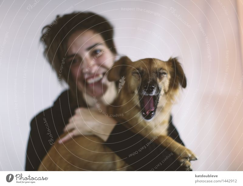 i want food 1 Mensch Tier Haustier Hund Kommunizieren Coolness Freundlichkeit Fröhlichkeit Zusammensein Glück Müdigkeit Appetit & Hunger Partnerschaft Freiheit