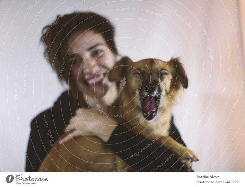 i want food Mensch Hund Tier Freude Glück Freiheit Zusammensein Freundschaft Häusliches Leben Freizeit & Hobby Fröhlichkeit Kommunizieren Coolness