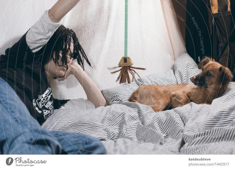 nom 1 Mensch Haustier Hund Tier beobachten Spielen Fröhlichkeit Zusammensein Glück Neugier niedlich weich Freude Tierliebe achtsam Selbstbeherrschung Interesse