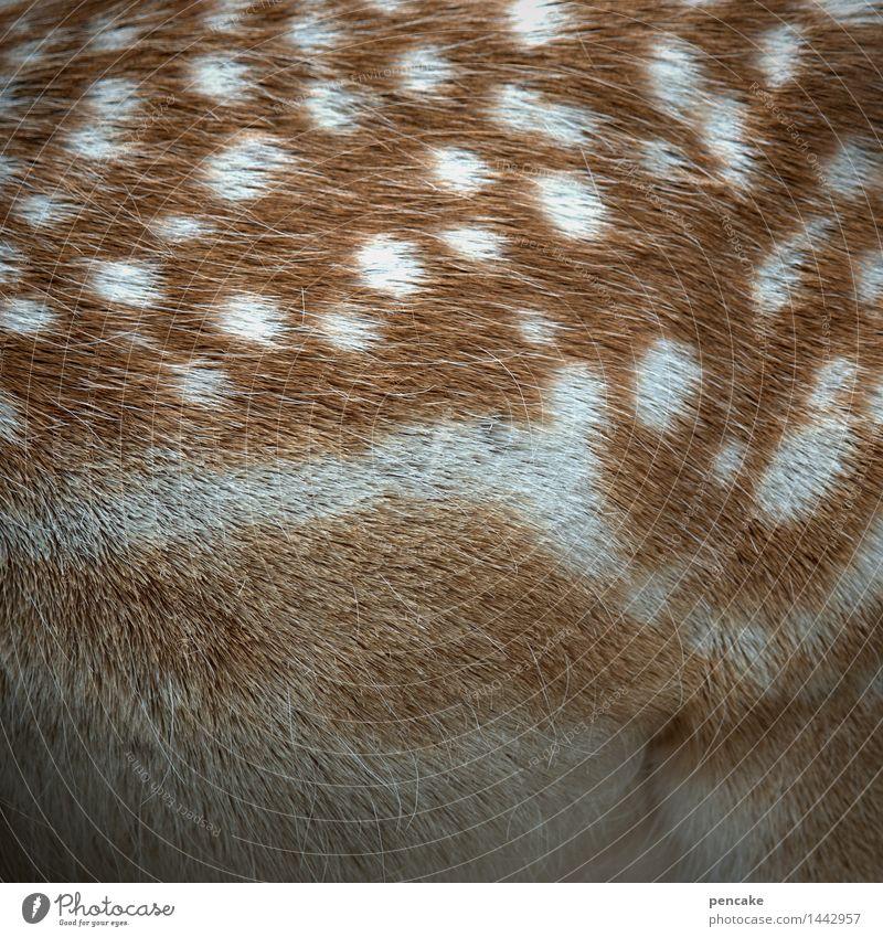 comic | bambi Natur Tier Wildtier Tierjunges Zeichen Bekanntheit niedlich Rehkitz Bambi Fell Punkt Punktmuster Farbfoto Außenaufnahme Nahaufnahme Detailaufnahme