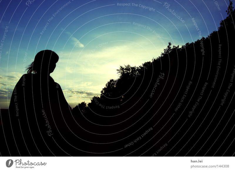 Silhouette Haare & Frisuren Frau Erwachsene Kopf Himmel Wolken Wind Wald gehen laufen blau schwarz Sonnenuntergang Abenddämmerung Tag Dämmerung Sonnenlicht