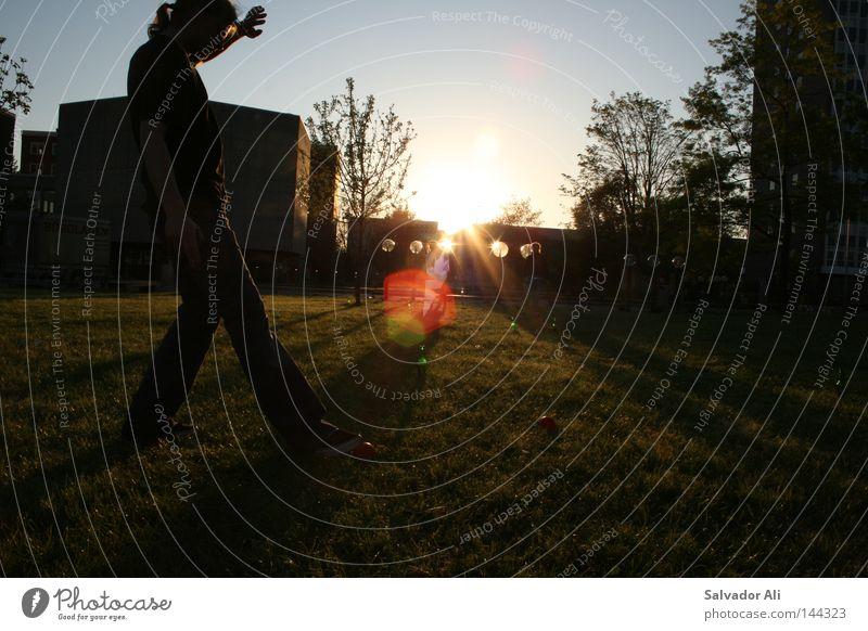 Sunset-Pils-Kubb Schweden Freizeit & Hobby Pause Erholung Sonnenuntergang Aktion Spielen edel elegant Gefühle werfen Sommer Rasen Sportrasen grün Licht blau