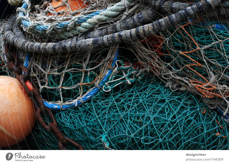 Netzwerk Meer grün Ernährung Leben Tod See warten Lebensmittel Seil Fisch Netzwerk Fisch Netz Hafen fangen Verbindung