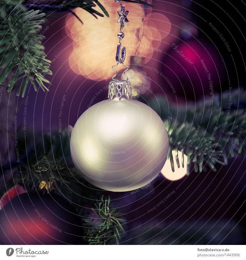 Geschmückten Weihnachtsbaum Glück Winter Dekoration & Verzierung Weihnachten & Advent Familie & Verwandtschaft Liebe Fröhlichkeit Romantik Feiertag fest