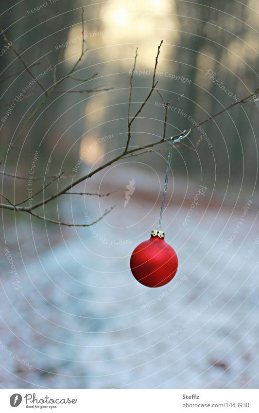 bald Weihnachten.. Weihnachten & Advent Weihnachtsbaum Weihnachtsdekoration Christbaumkugel Natur Landschaft Winter Schnee Zweig Zweige u. Äste Wald Fußweg