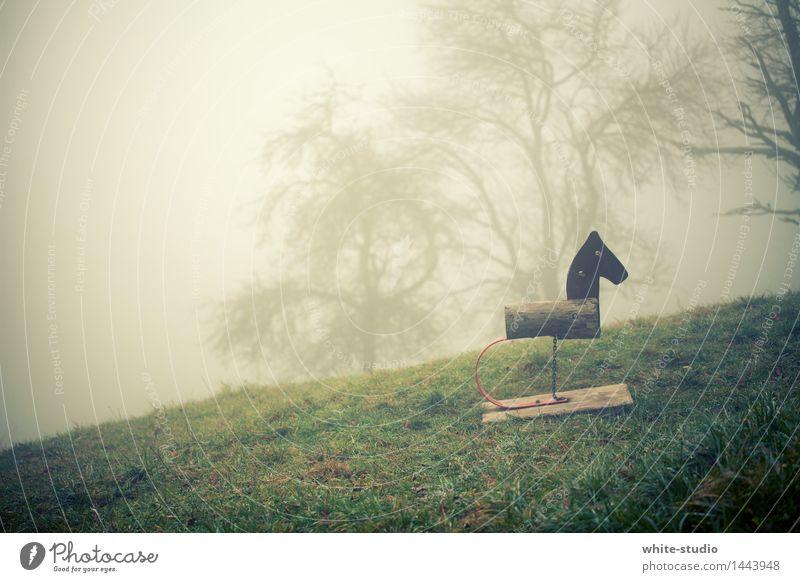 Düsterland Natur bedrohlich Alptraum Einsamkeit Idylle ruhig Nebel Nebelschleier Nebelstimmung Pferd Spielplatz Hoffnungslosigkeit Traurigkeit perspektivlos