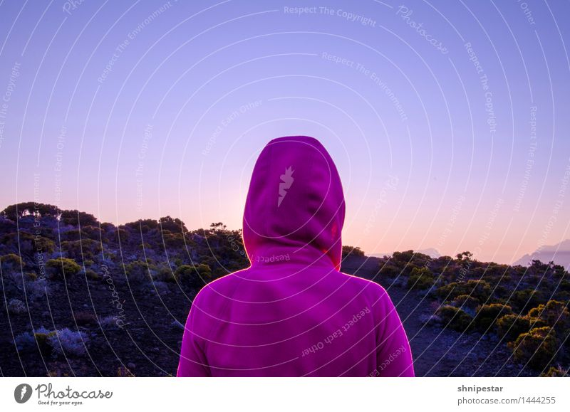 Sunset at Piton de La Fournaise Ferien & Urlaub & Reisen Ausflug Abenteuer Ferne Berge u. Gebirge wandern Klettern Bergsteigen Outdoor Mensch feminin Junge Frau
