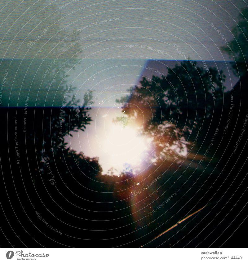 blausprödigkeit Licht Reflexion & Spiegelung Himmel Sonne Baum Schwimmbad Wasser schön Himmelskörper & Weltall light sky tree water sun