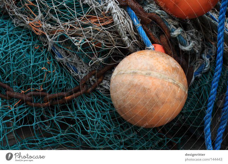 vernetzt Meer grün Ernährung Leben Tod See warten Lebensmittel Seil Fisch Netzwerk Hafen fangen Verbindung