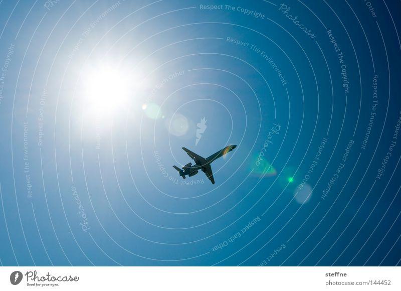 Überflieger Flugzeug fliegen Freiheit Sonne Sonnenstrahlen Reflexion & Spiegelung Schönes Wetter Blauer Himmel Düsenflugzeug Luftverkehr