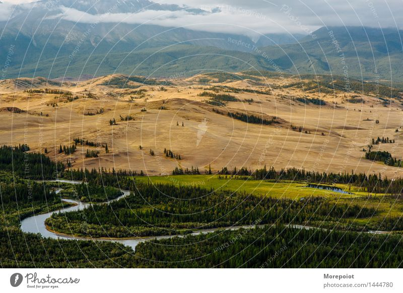 Altay Natur Landschaft Erde Horizont Sommer Herbst Wetter Schönes Wetter Baum Gras Wildpflanze Feld Wald Hügel Felsen Berge u. Gebirge Gipfel Küste Fluss