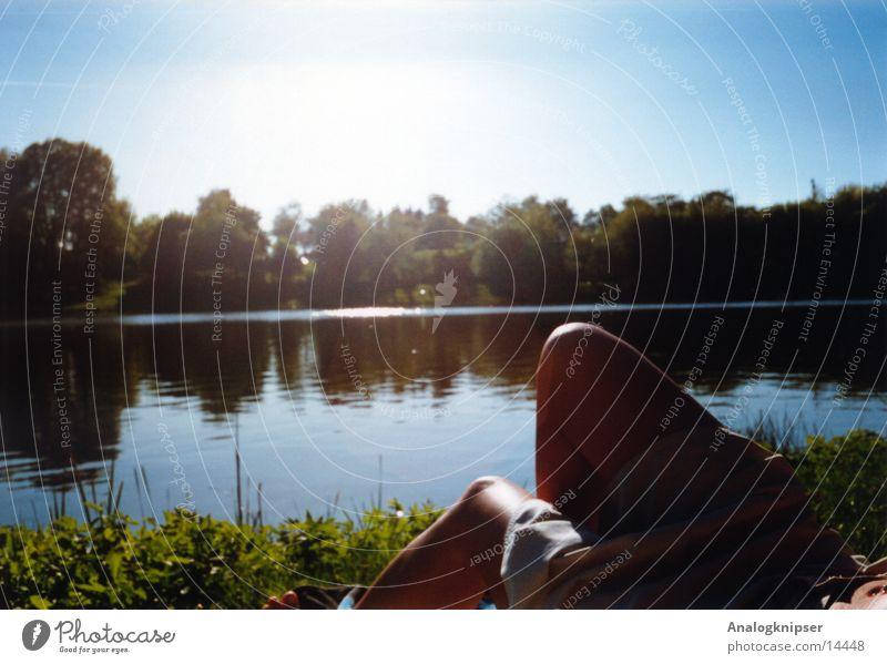 Baggersee See Gegenlicht Frau Knie Sommer Freizeit & Hobby Ferien & Urlaub & Reisen genießen Baum Gras Wasser Sonne Beine Natur