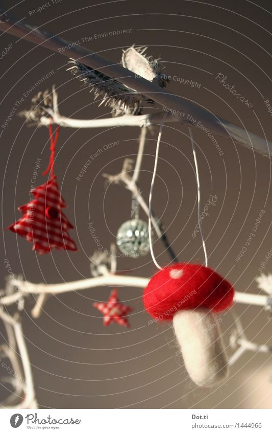 Filzpilz Dekoration & Verzierung Weihnachten & Advent stachelig rot weiß Zweig Datura Stechapfelzweig Pilz Fliegenpilz Weihnachtsbaum Stern (Symbol)