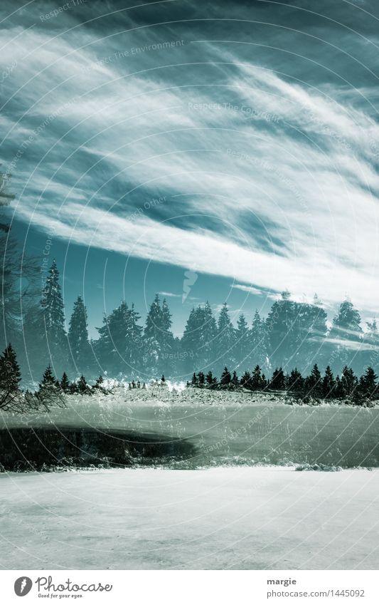 Traumhafte Winterlandschaft Ferien & Urlaub & Reisen Schnee Winterurlaub Umwelt Landschaft Himmel Wolken Klima Klimawandel Wetter Wind Eis Frost Hagel
