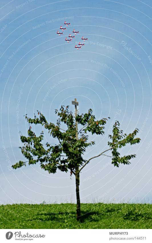 PC-7 Swiss: Diamant (Formation) kreist über einem Kirschbaum Himmel blau grün rot Wolken Wiese Gras Nebel fliegen Flugzeug Luftverkehr Show Schweiz Artist Dunst