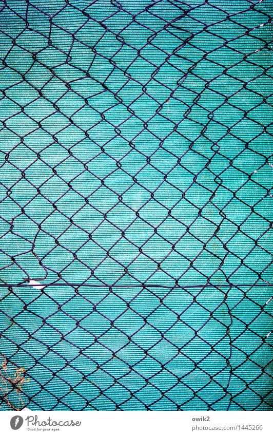 Sicherungshaken Zaun Maschendraht Maschendrahtzaun Gitternetz netzartig Zusammensein geflochten Abdeckung Gartenzaun Metall Kunststoff dünn authentisch eckig