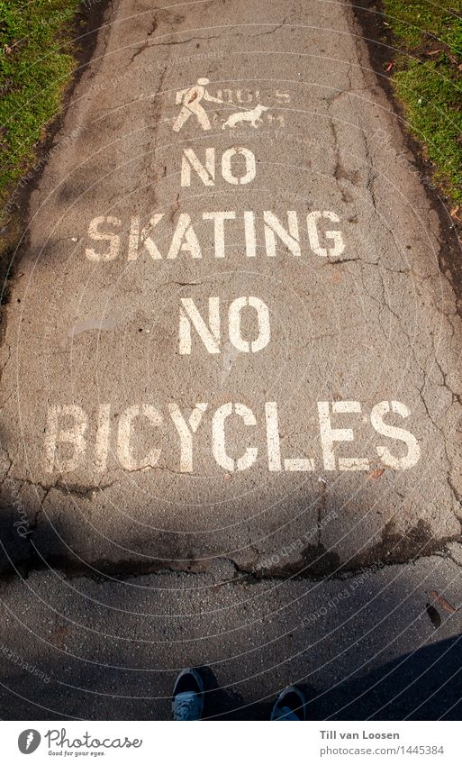 no skating Hund grün weiß Tier Wiese Wege & Pfade Gras grau Stein gehen Schriftzeichen Zeichen Skateboard Piktogramm Fahrradweg