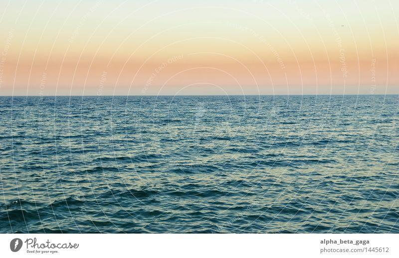 weitblick Ferien & Urlaub & Reisen Ferne Sommer Meer Insel Wasser Wolkenloser Himmel Horizont Sonnenaufgang Sonnenuntergang Frühling Herbst Wellen Barcelona