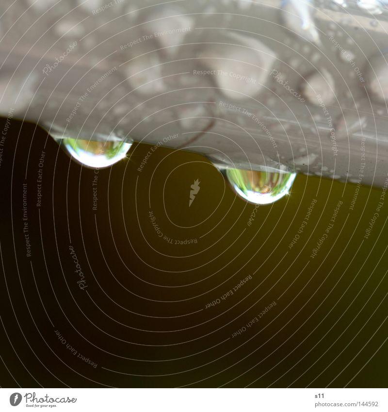 after raining Wasser grün grau Regen braun Wetter Wassertropfen nass Klarheit Gewitter rieseln tropfend
