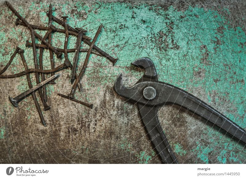 Zange mit Nägeln alt grün braun Metall Arbeit & Erwerbstätigkeit Freizeit & Hobby Kraft Baustelle Beruf türkis Rost Dienstleistungsgewerbe Handwerk Sammlung