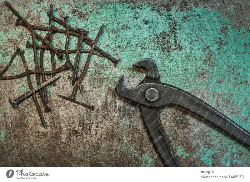 Zange mit Nägeln Freizeit & Hobby heimwerken Arbeit & Erwerbstätigkeit Beruf Handwerker Dienstleistungsgewerbe Mittelstand Metall braun grün türkis Tatkraft