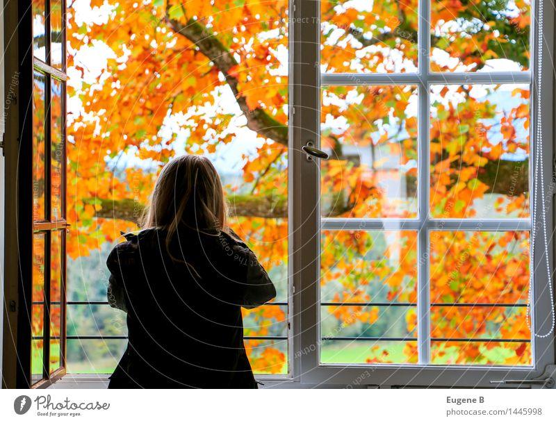 Fensterplatz Innenarchitektur Raum feminin Junge Frau Jugendliche Körper 1 Mensch 18-30 Jahre Erwachsene Kunst Museum Umwelt Natur Landschaft Herbst