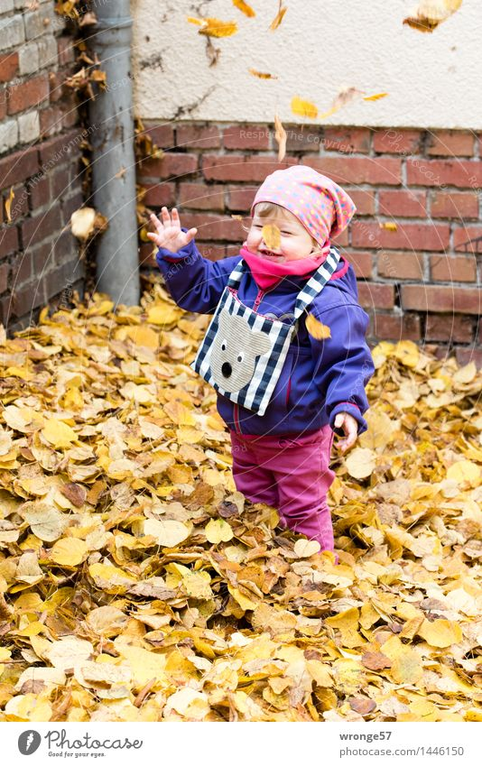 Blättersturm Kind Kleinkind Mädchen Kindheit 1 Mensch 1-3 Jahre Lächeln lachen stehen leuchten Fröhlichkeit Glück lustig blau braun mehrfarbig gelb grau rosa