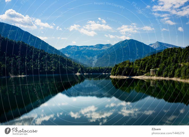 Silvenstein Umwelt Natur Landschaft Wasser Himmel Wolken Sommer Schönes Wetter Baum Sträucher Wald Alpen Berge u. Gebirge Seeufer frisch nachhaltig natürlich
