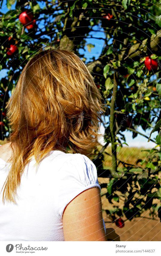 Eva und der Apfelbaum weiß Baum grün rot Farbe Traurigkeit Feld blond Suche Hoffnung Trauer Apfel Schönes Wetter unterwegs Apfelbaum Apfel der Erkenntnis