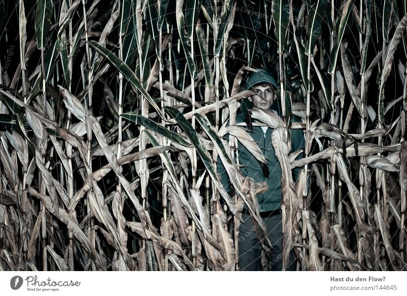 Suchbild Mensch Winter Einsamkeit gelb Fenster Gefühle Gras Wege & Pfade Haare & Frisuren klein Traurigkeit braun Regen Wohnung blond Perspektive