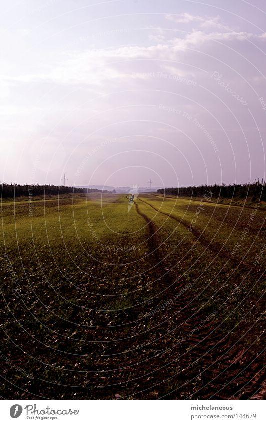 Komm zurück! Himmel grün Sommer Ferne Herbst grau Zufriedenheit Feld Horizont Trauer Zukunft Sehnsucht