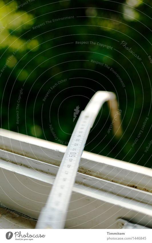 Ende offen. Natur grün weiß schwarz Umwelt Autofenster Neugier Kontrolle 50 messen Skala Zollstock
