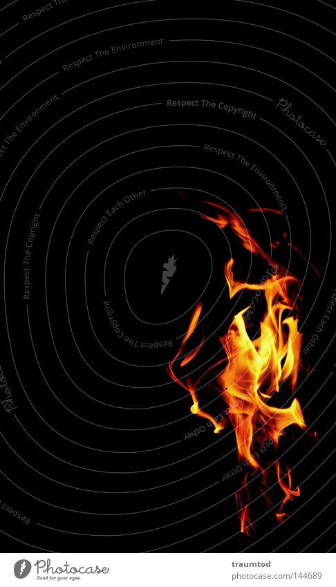 Tanz der Teufel I Brand Feuer Flamme Physik heiß Grill rot gelb orange schwarz Glut brennen verbrannt Angst Nacht dunkel hell Hoffnung Feuerstelle Panik Wärme