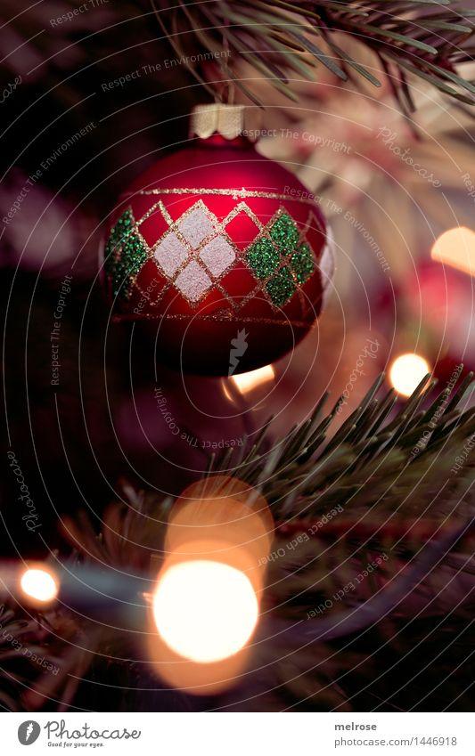 es weihnachtet III elegant Stil Weihnachten & Advent Baum Tanne Weihnachtsbaum Christbaum Zweige u. Äste Unschärfe Lichtpunkt Weihnachtsdekoration